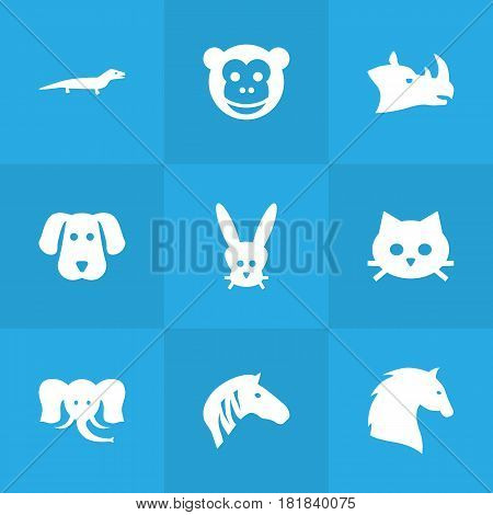 Set Of 9 Alive Icons Set.Collection Of Bunny, Steed, Ape And Other Elements.
