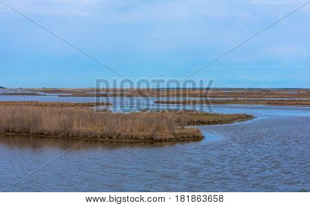 Islands of brown in the blue waters of a Salt Marsh