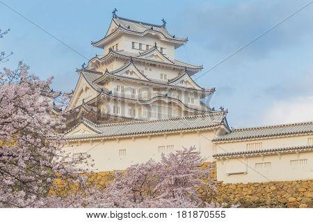 Himeji Castle With Sakura Cherrry Blossoms Season