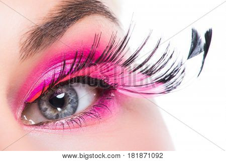 Macro eye of a woman with pink eyeshadow and long feather false eyelashes isolated on white background