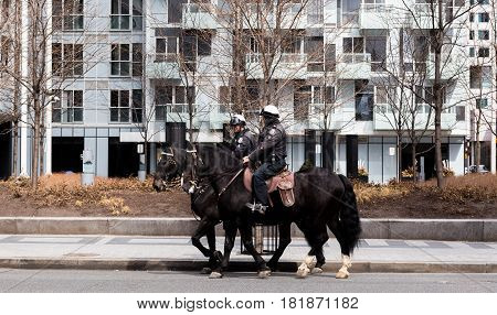 Toronto Ontario Canada - April.9.2017: Toronto Mounted Police on horses in Toronto Ontario Canada