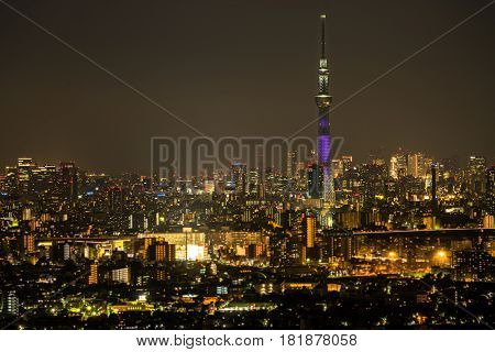Tokyo Sky Tree With Tokyo Cityscape