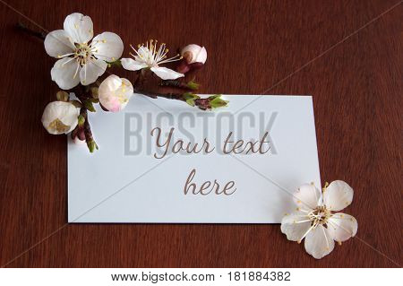 Horizontal blossoming tree brunch with spring white flowers on wooden background in rustic style.
