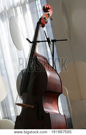 a cello in a  calm, relaxed & serene location