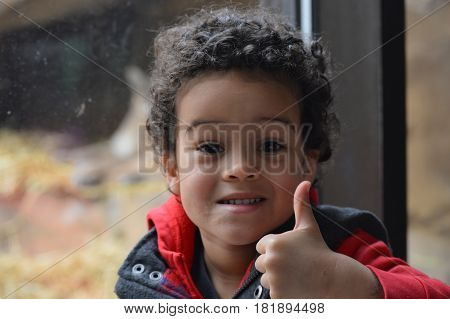 SAINT PAUL, MINNESOTA - MARCH 2017:  A young boy giving a thumbs up at the puma exhibit at Como Zoo.
