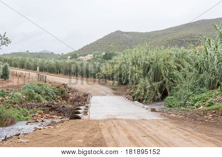 OUDE MURAGIE SOUTH AFRICA - MARCH 24 2017: A low water bridge and olive orchards on the Oude Muragie road between De Rust and the Cango Caves in the Western Cape Province of South Africa