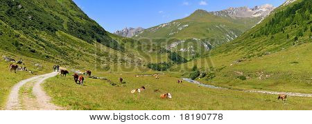 Scenic alpine panorama