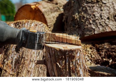 Electric powered jig saw blade adjustment close up electric jig saw to cut tree Sawing electric jig saw to cut tree by electric jig saw close up