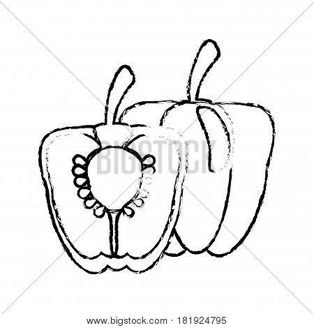 half pepper food diet healthy sketch vector illsutration eps 10