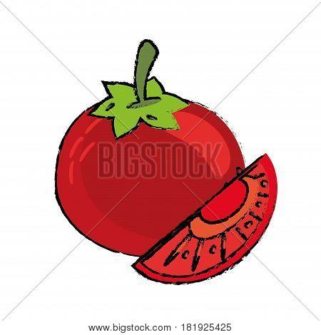 tomato slice food diet healthy vector illsutration eps 10