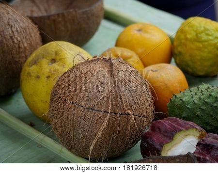 farm produce A collection of locally produced fruits including a coconut,  cacao, oranges, pomelo and soursoup.