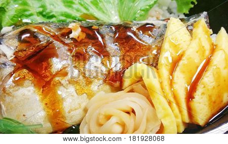 The Grilled Saba Fish Barbecue Sauce And Tamago With Rice In Box Set