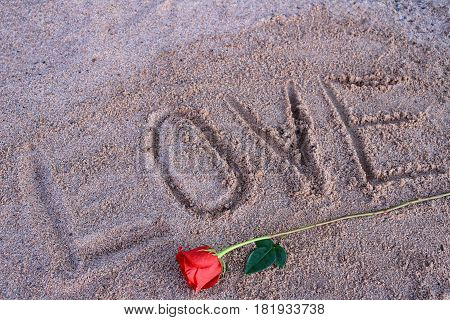 Red rose laying under the words love etched in beach sand.
