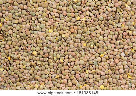 Lentil food texture. Lentils as background. beans
