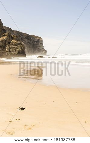 view of a beach in algarve with reflection of the cliffs. algarve portugal