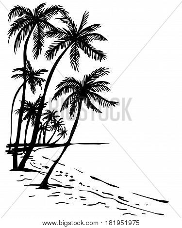 Summer beach with palm trees; hand drawn Sketch illustration of palm trees and sea view