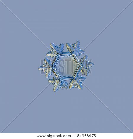 Macro photo of real snowflake: medium size snow crystal of star plate type with six short, broad arms with glossy relief surface, and large, flat and empty central hexagon. Snowflake isolated on pale blue uniform background.