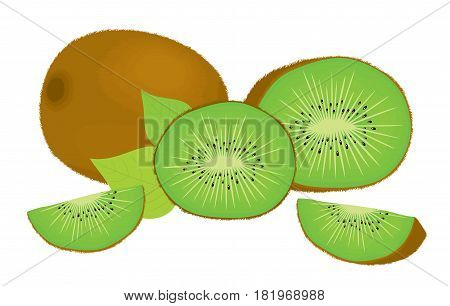 Vector set of whole kiwi fruit and his sliced segments, isolated on white background. Realistic vector illustration for design.