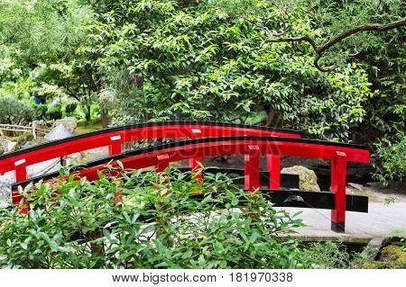 A red bridge in a beautiful Japanese Garden