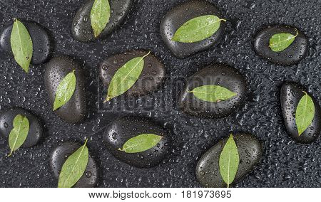 Several black basalt massage stones with green leaves on them covered with water drops distributed on a black background; top view flat lay