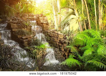 Waterfall in decorative tropical garden with exotical plants