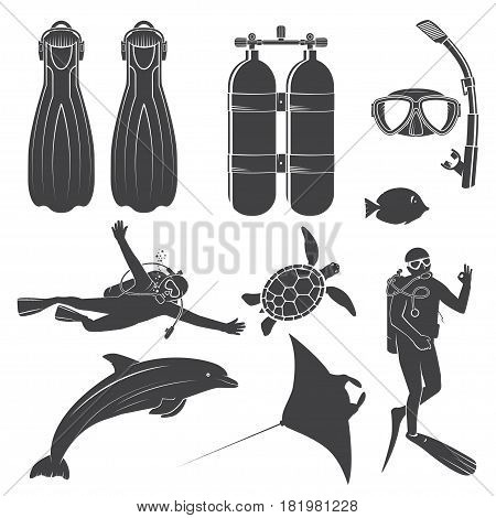 Scuba diving gear and divers. Vector illustration. Set include dive mask, snorkel, fins, divers and sea animals. Elements on the theme of the diving service business.