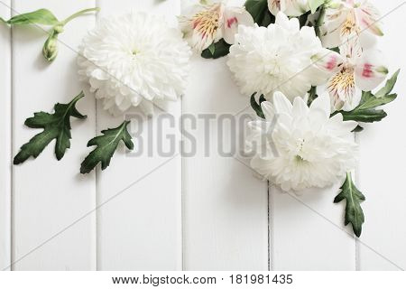 the white chrysanthemum on white wooden background