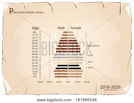 Population and Demography, Population Pyramids Chart or Age Structure Graph with Baby Boomers Generation, Gen X, Gen Y and Gen Z in 2016 to 2020 on Old Antique Vintage Grunge Paper Texture Background.
