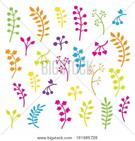 Vector floral collection with leaves and flowers. Spring or summer design for invitation, wedding or greeting cards