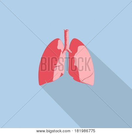 Lungs infographic. Anatomical icon of lungs on blue background. 3d illustration.