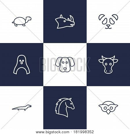 Set Of 9 Alive Outline Icons Set.Collection Of Lizard, Horse, Owl And Other Elements.