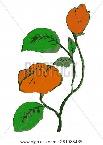 Red Flawer And Green Leaf.  Retro Floral White Background
