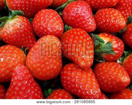 Fresh Strawberries. Strawberry Background. Pattern Texture. Macro. Large, Big Strawberries. Harvesti