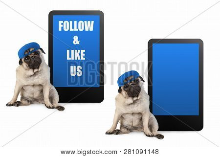 Cute Pug Puppy Dog Looking Smart, Sitting Next To Tablet Phone With Text Follow And Like Us, Wearing