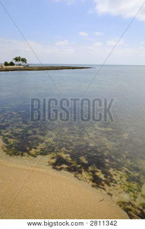 Solitary Beach