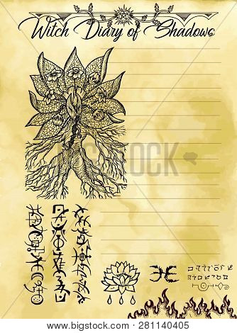 Witch Diary Page 8 Of 31 With Mandrake Plant And Evil Symbols. Magic Wiccan Old Book With Occult Ill