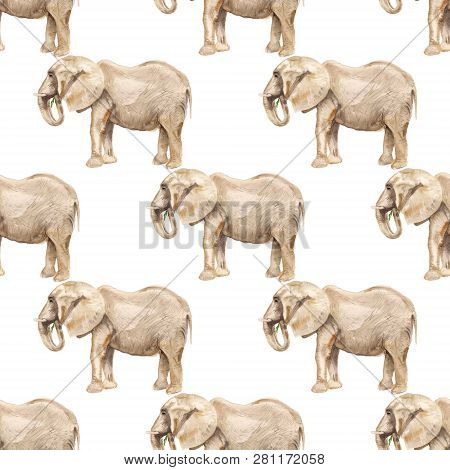 Seamless Pattern With Watercolor Image Of Elephant. Good Design For Wrapping Paper, Textile, Scrap B