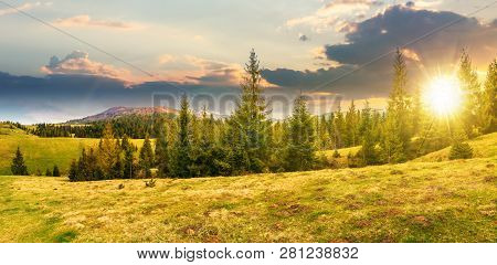 Panorama Of Beautiful Countryside In Mountains At Sunset In Evening Light. Spruce Trees On The Meado