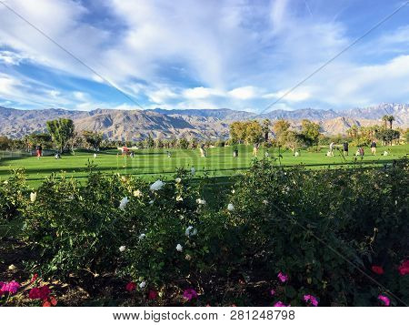A Beautiful Grass Driving Range In Palm Springs, California, United States.  The Range Is Grass With