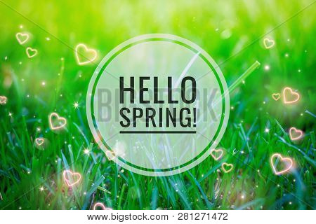 Hello Spring Banner . Greetings Of Spring. We Are Waiting For Spring. Hi Spring