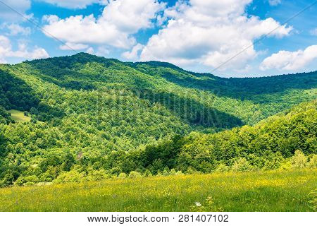Summertime In Mountains. Beautiful Countryside Landscape. Grassy Meadow With Yellow Herbs. Fluffy Cl