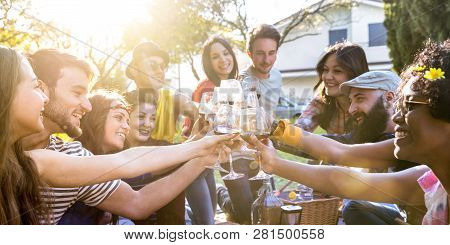 Friends Group Toasting Red Wine And Having Fun Outdoor Cheering At Bbq Picnic - Young People Enjoyin