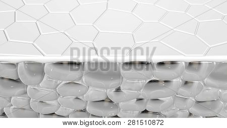 A cross section scientific view of a skins top layer and eperdermis cells sub layer beneath it on an isolated background - 3D render poster