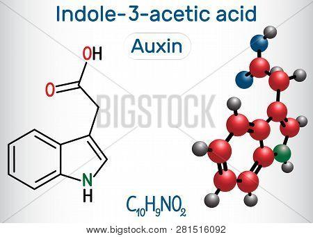 Auxin, Indole-3-acetic Acid (iaa). Structural Chemical Formula And Molecule Model. Vector Illustrati