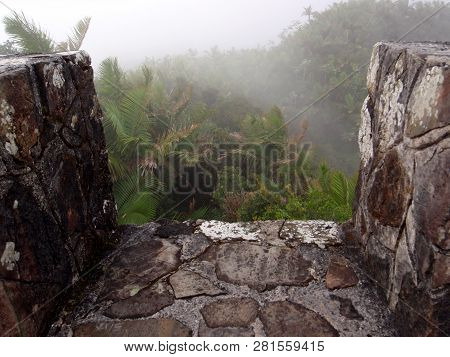Looking Out Into Foggy Forest On Top Of Mt. Britton Lookout Tower