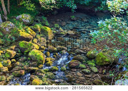Crystal Clear Waters Of Mountain River Coming From The Thaw. National Park Of The Picos De Europa (c