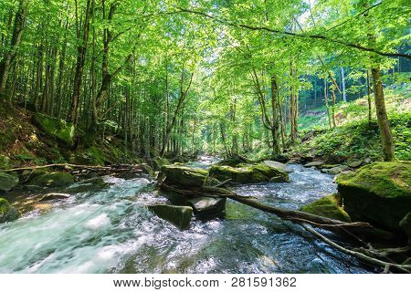 Rapid Stream Among The Rocks In The Forest. Beautiful Nature Scenery In Springtime. Green Foliage On