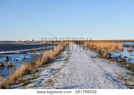 Snowy Pathway Through The Reeds In A Marshland At The Swdish Island Oland