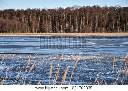 Landscape With A Bright Frozen Lake In The Woods