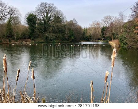 HAMPSTEAD HEATH, LONDON - 29 JANUARY, 2019: Ice covers the mixed sex bathing ponds during a cold snap on Hampstead Heath in Hampstead, London, UK.